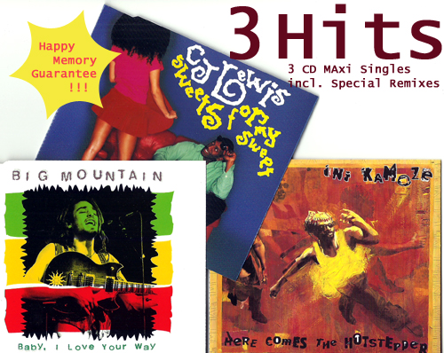 CJ LEWIS, INI KAMOZE & BIG MOUNTAIN - 3 Hits [3 Top CD Singles in 1 Package] - CD single